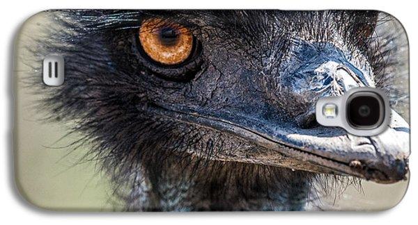 Emu Eyes Galaxy S4 Case by Paul Freidlund
