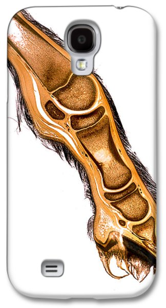 Feet Sculptures Galaxy S4 Cases - Equine foal distal limb hoof anatomy specimen 30152  Galaxy S4 Case by Christoph Von Horst
