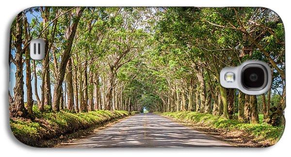 Summer Light Galaxy S4 Cases - Eucalyptus Tree Tunnel - Kauai Hawaii Galaxy S4 Case by Brian Harig