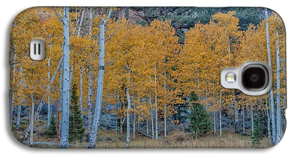 Nature Abstract Galaxy S4 Cases - Fall Colors Galaxy S4 Case by Jonathan Nguyen