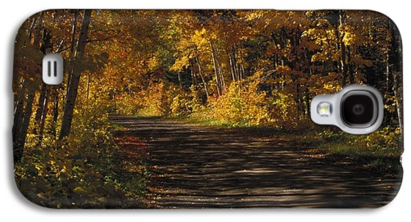Landscapes Photographs Galaxy S4 Cases - Fall Scene Of A Tree-shaded Road Galaxy S4 Case by Gillham Studios