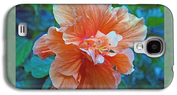 Botanical Galaxy S4 Cases - Fancy Peach Hibiscus Galaxy S4 Case by Sandi OReilly