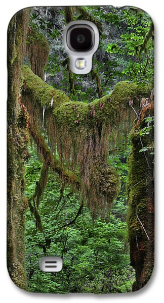Ferns Galaxy S4 Cases - Fascinating Hoh Valley - Hoh Rain Forest Olympic National Park ONP WA USA Galaxy S4 Case by Christine Till