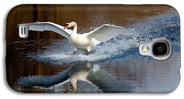 Swans... Galaxy S4 Cases - Fasten Your Seatbelts Galaxy S4 Case by Roeselien Raimond
