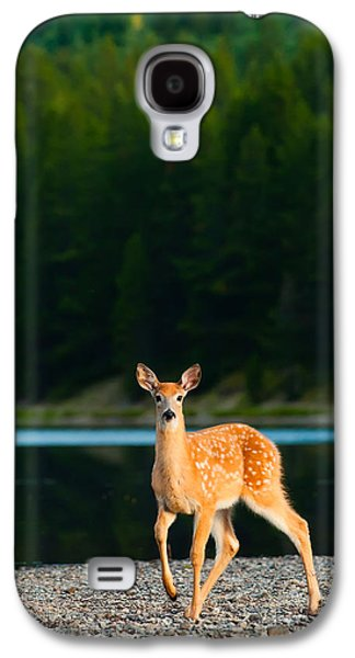 Game Photographs Galaxy S4 Cases - Fawn Galaxy S4 Case by Sebastian Musial