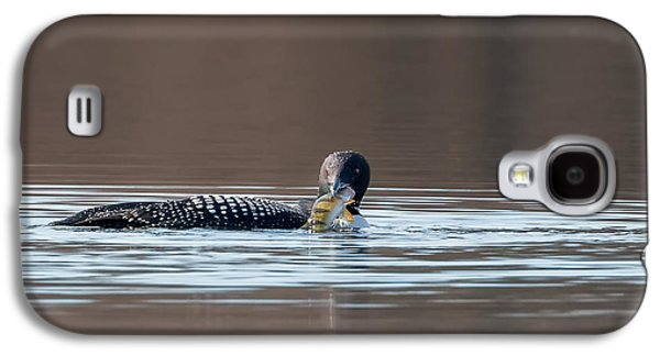 Loon Galaxy S4 Cases - Feeding Common Loon Galaxy S4 Case by Bill Wakeley