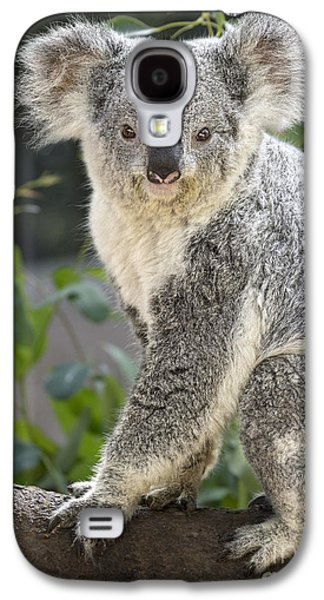 Female Koala Galaxy S4 Case by Jamie Pham