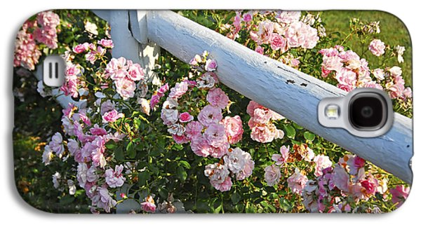 Botanical Galaxy S4 Cases - Fence with pink roses Galaxy S4 Case by Elena Elisseeva