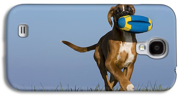 Boxer Galaxy S4 Cases - Fetching Boxer Puppy Galaxy S4 Case by Jean-Louis Klein & Marie-Luce Hubert