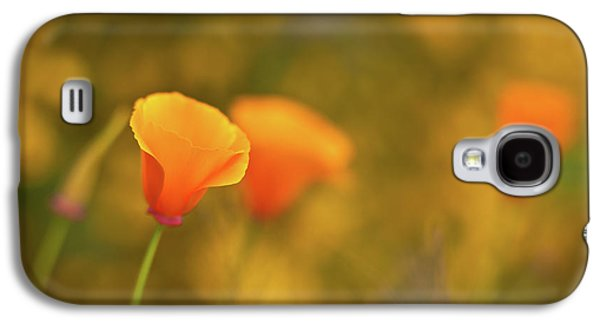 Gold Galaxy S4 Cases - Field of Gold Galaxy S4 Case by Mike Reid