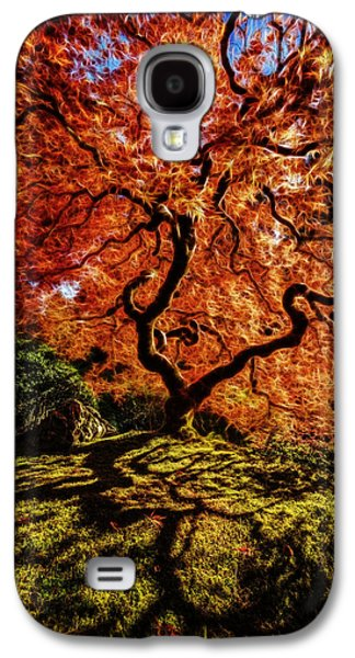 Surreal Landscape Galaxy S4 Cases - Fiery Japanese Maple D1369 Galaxy S4 Case by Wes and Dotty Weber