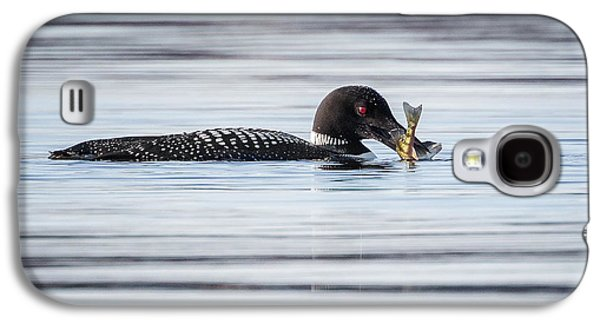 Loon Galaxy S4 Cases - Fish For Lunch Galaxy S4 Case by Bill Wakeley