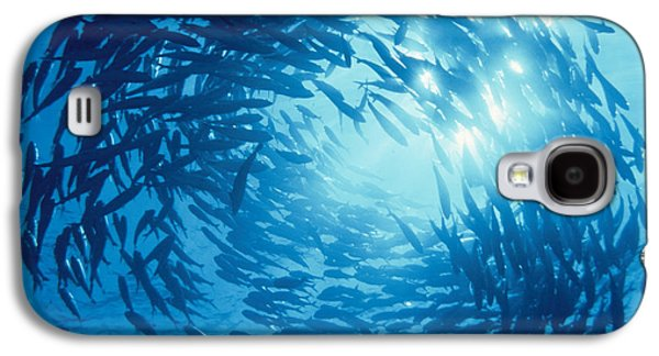 Schools Of Fish Galaxy S4 Cases - Fishes Swarm Underwater Galaxy S4 Case by Panoramic Images