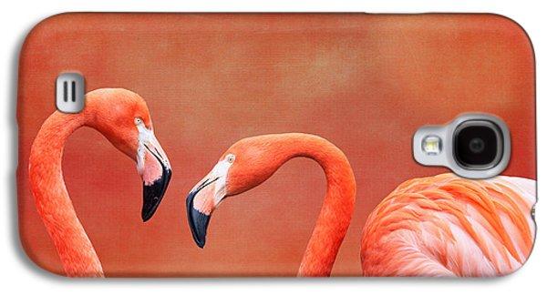 Water Fowl Galaxy S4 Cases - Flamboyant Flamingos Galaxy S4 Case by Tom Mc Nemar