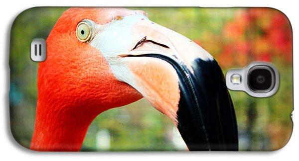 Abstract Digital Art Galaxy S4 Cases - Flamingo Face Galaxy S4 Case by Cynthia Guinn
