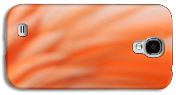 Abstract Nature Galaxy S4 Cases - Flamingo Sunrise rising Galaxy S4 Case by Andrea Elliott