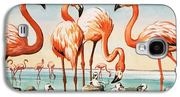 Flamingoes Galaxy S4 Case by English School