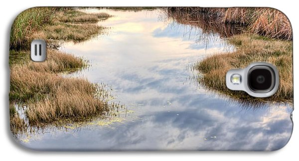 Florida Panhandle Galaxy S4 Cases - Flordia Wetlands Galaxy S4 Case by JC Findley