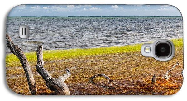 Florida Keys Colors Galaxy S4 Case by Elena Elisseeva