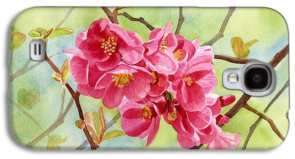 Salmon Paintings Galaxy S4 Cases - Flowering Quince with Background Galaxy S4 Case by Sharon Freeman