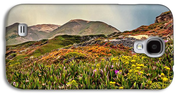 Landscapes Photographs Galaxy S4 Cases - Flowers Everywhere Galaxy S4 Case by Maria Coulson
