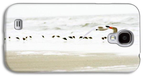 Tern In Flight Galaxy S4 Case by Angela Rath