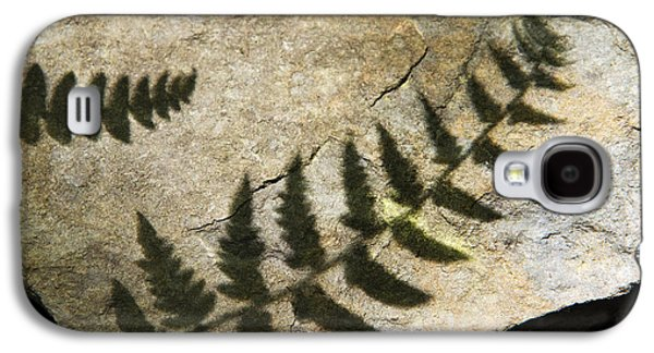Nature Abstract Galaxy S4 Cases - Forest Fern Shadows Galaxy S4 Case by Christina Rollo