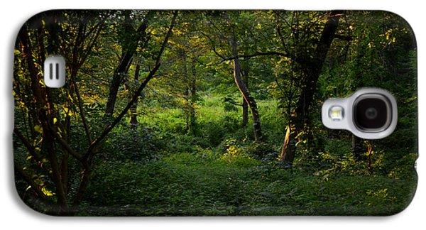 Sudbury Ma Galaxy S4 Cases - Forestland in Sudbury MA Wayside Inn Galaxy S4 Case by Toby McGuire