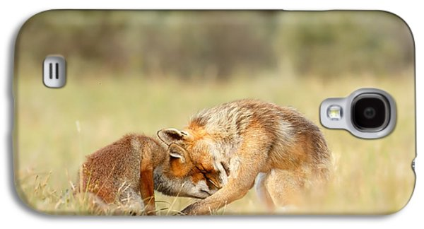 Bonding Galaxy S4 Cases - Foreverandeverandever - Red Fox Love Galaxy S4 Case by Roeselien Raimond
