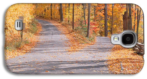 Autumn In The Country Galaxy S4 Cases - Forked Road In A Forest, Vermont, Usa Galaxy S4 Case by Panoramic Images