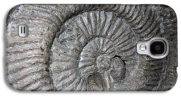 Fossil Spiral  Galaxy S4 Case by LeeAnn McLaneGoetz McLaneGoetzStudioLLCcom