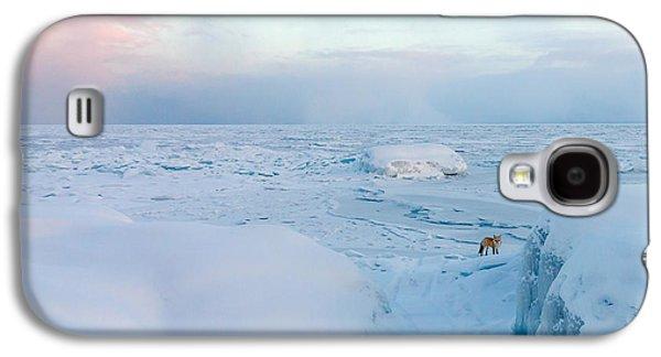 Mary Amerman Photographs Galaxy S4 Cases - Fox of the North I Galaxy S4 Case by Mary Amerman