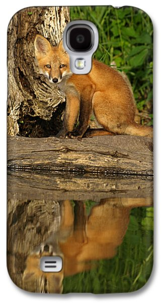 Puppies Galaxy S4 Cases - Fox Reflection Galaxy S4 Case by James Peterson