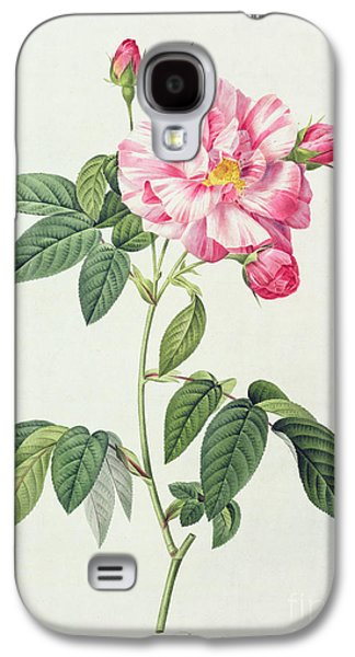 French Rose Galaxy S4 Case by Pierre Joseph Redoute