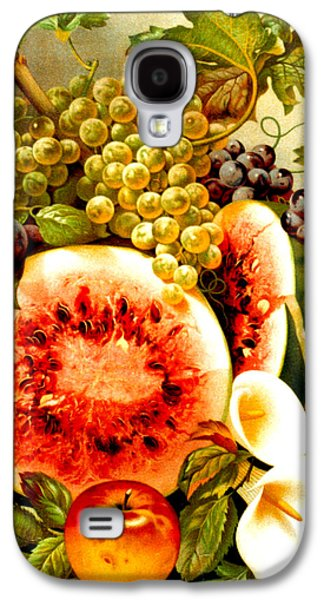 Plum Drawings Galaxy S4 Cases - Fruit and Calla Lilies - Vintage Art Painting Galaxy S4 Case by Just Eclectic