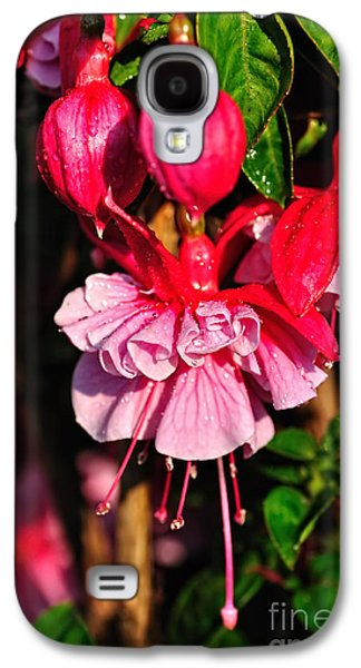 Genus Galaxy S4 Cases - Fuchsias with Droplets Galaxy S4 Case by Kaye Menner