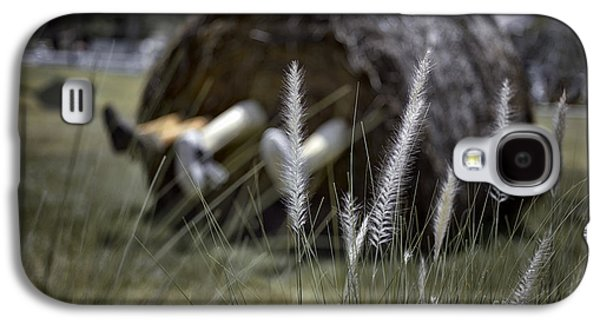 Concept Photographs Galaxy S4 Cases - Fun in the hay Galaxy S4 Case by Ray Evans
