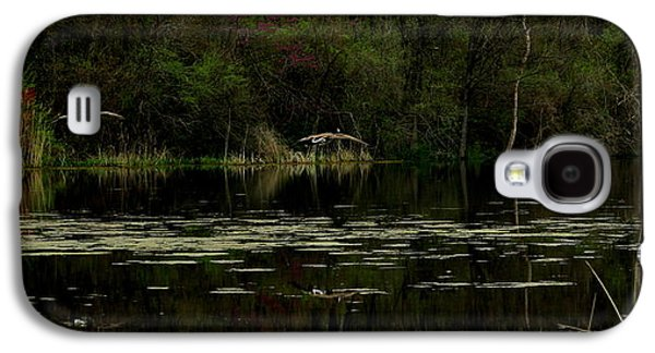 Alga Galaxy S4 Cases - Geese Landing by Earls Photography Galaxy S4 Case by Earl  Eells a