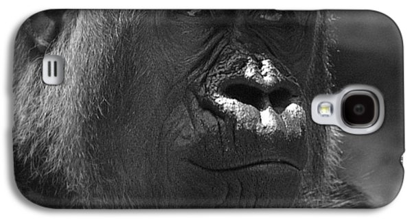 Contemplative Photographs Galaxy S4 Cases - Gentle Gorilla Galaxy S4 Case by Lori Seaman