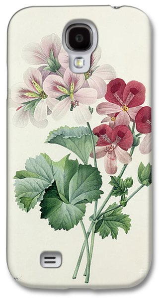 Nature Study Drawings Galaxy S4 Cases - Geranium Variety Galaxy S4 Case by Pierre Joseph Redoute