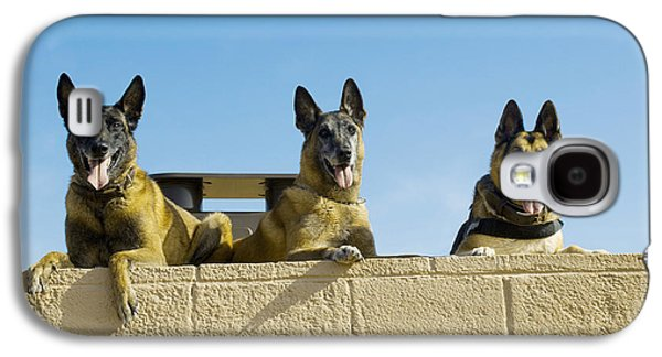 Working Dog Galaxy S4 Cases - German Shephard Military Working Dogs Galaxy S4 Case by Stocktrek Images