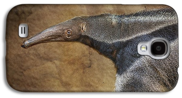 Ants Galaxy S4 Cases - Giant Anteater Portrait Galaxy S4 Case by Jamie Pham