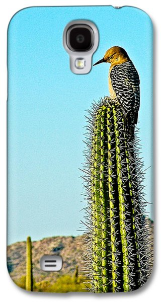 Gila Woodpecker On Saguaro In Organ Pipe Cactus National Monument-arizona Galaxy S4 Case by Ruth Hager
