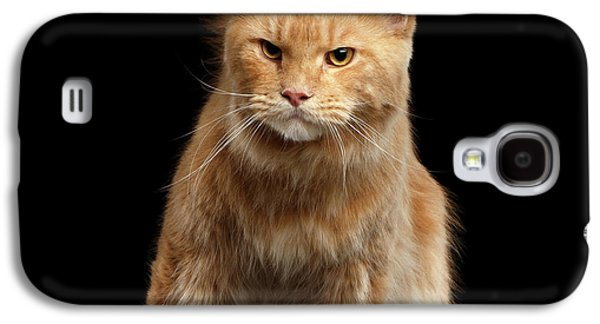 Ginger Maine Coon Cat Gaze Looks Isolated On Black Background Galaxy S4 Case by Sergey Taran