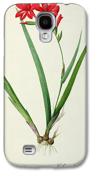 Botanical Galaxy S4 Cases - Gladiolus Cardinalis Galaxy S4 Case by Pierre Joseph Redoute