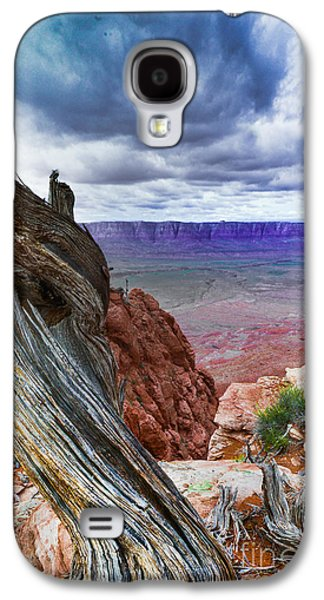 Gnarly Galaxy S4 Cases - Gnarly Desert Galaxy S4 Case by Jim DeLillo