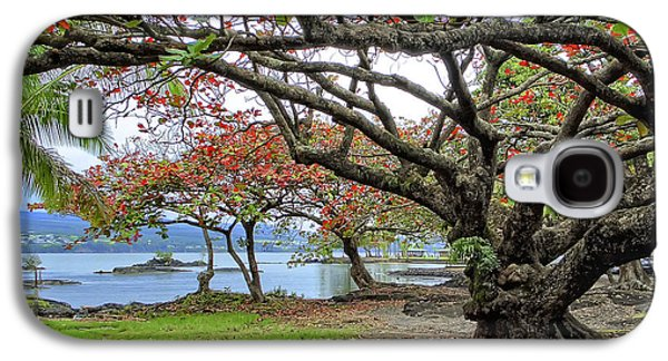 Gnarly Galaxy S4 Cases - GNARLY TREES of SOUTH HILO BAY - HAWAII Galaxy S4 Case by Daniel Hagerman