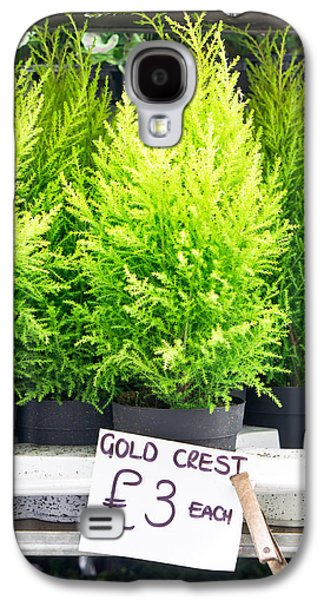 The Nature Center Galaxy S4 Cases - Gold crest plants Galaxy S4 Case by Tom Gowanlock