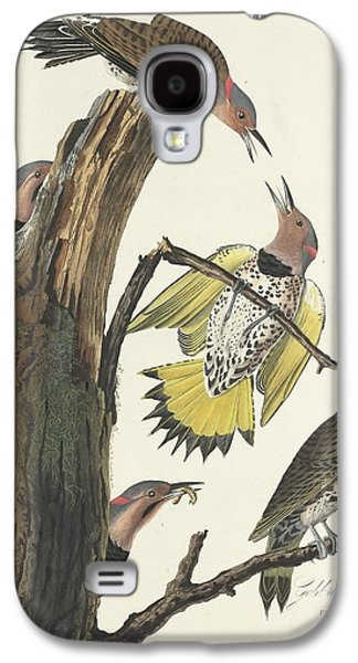Gold-winged Woodpecker Galaxy S4 Case by John James Audubon