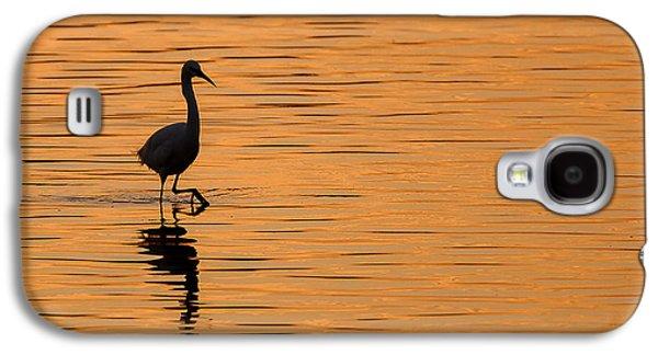 Little Galaxy S4 Cases - Golden Egret Galaxy S4 Case by Paul Neville